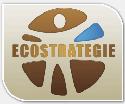 Lien éco-stratégie
